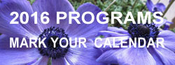 2016 programs link